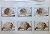 Magyarország 6 éven felüli népesség miveltségi foka térkép 1890